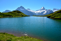 The Wetterhorn and the Schrekhorn from Bachalpsee