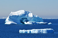 Icebergs near the Danger Islands