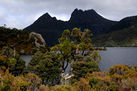 Cradle Mountain and Dove Lake, Cradle Mountain-Lake St. Clair National Park