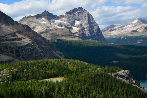 Odaray Mountain and the Opabin Plateau from the Yukness Ledges, Lake O'Hara Alpine Circuit